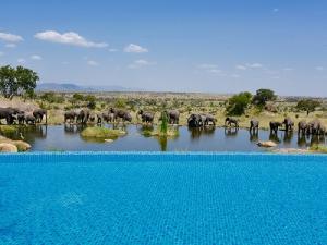 piscina hotel Four Seasons