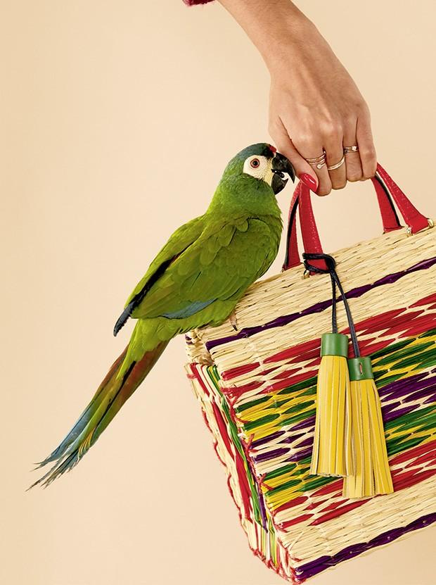 Bolsa de palha: Sugar Baby, arrase com essa peça de luxo